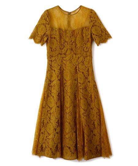 Lace Combi Flare Dress